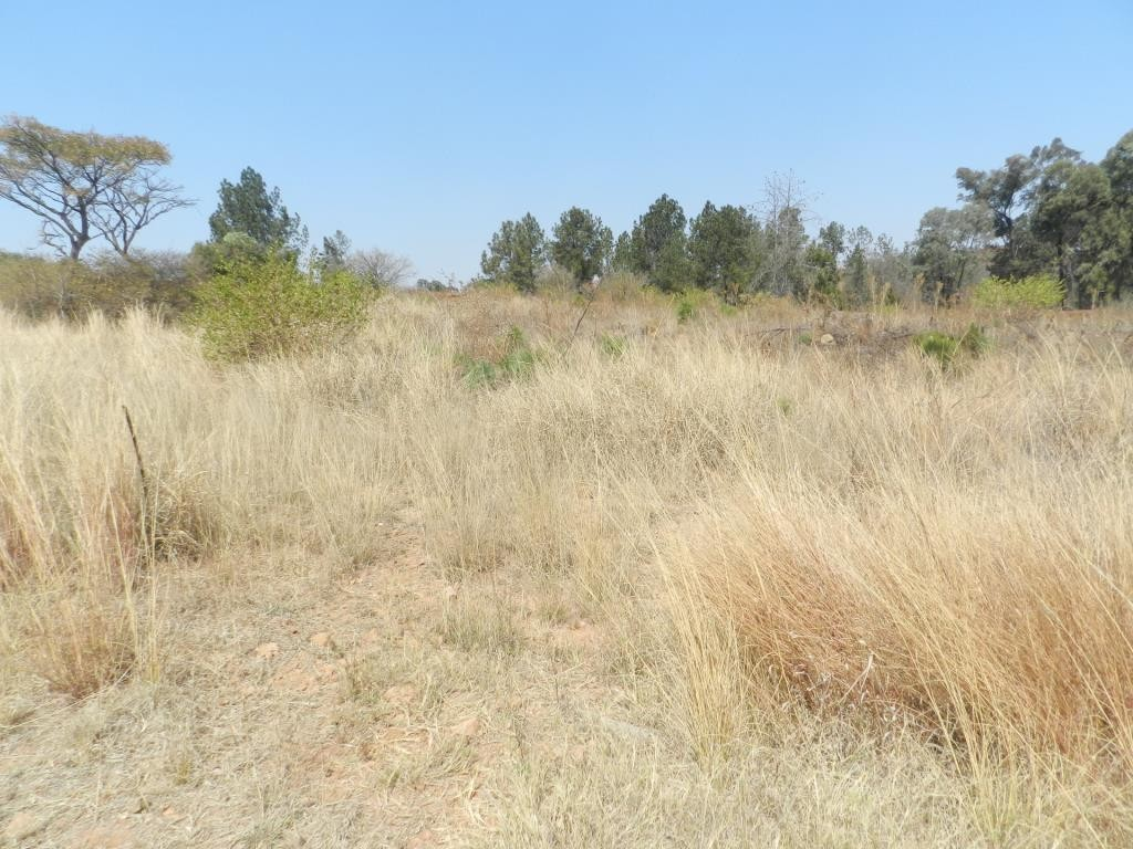 1,423m² Vacant Land For Sale in Kameeldrift East | Dormehl